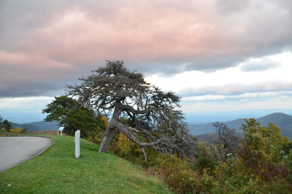 The Blue Ridge Parkway.