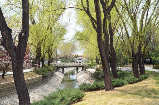 Tranquil Changhe Pu Park, in the middle of Old Beijing.