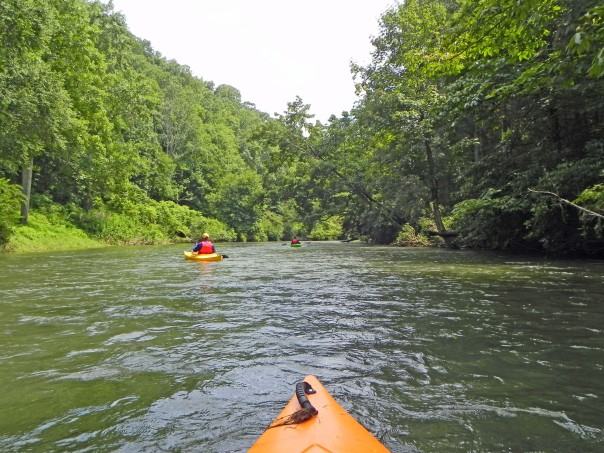 Kayaking on the scenic New River with RiverGirl Fishing Co.