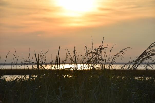 Sunset on the Assateague Island National Seashore.