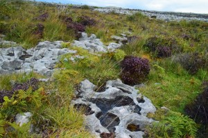 Landscape in The Burren.