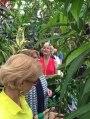 NC Botanical SecretRevealed