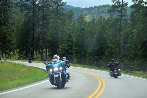 On the road in the Black Hills.