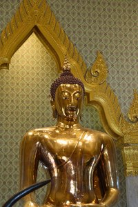 The solid gold, Golden Buddha.