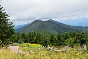 View in Mount Mitchell State Park
