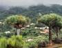 Las Canarias: Santa Cruz de laPalma